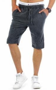 Vyriški laisvalaikio šortai McMech (Antracitas) Mens swimming trunks/shorts