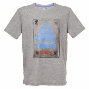 Vyriški marškinėliai PEAK grey