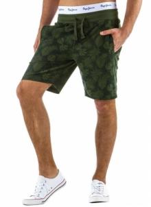 Vyriški šortai Theodore Mens swimming trunks/shorts