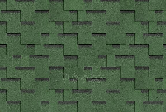 Bituminės lanksčiosios čerpės AKORDAS DŽAIVAS, žalia Paveikslėlis 1 iš 1 237140000018