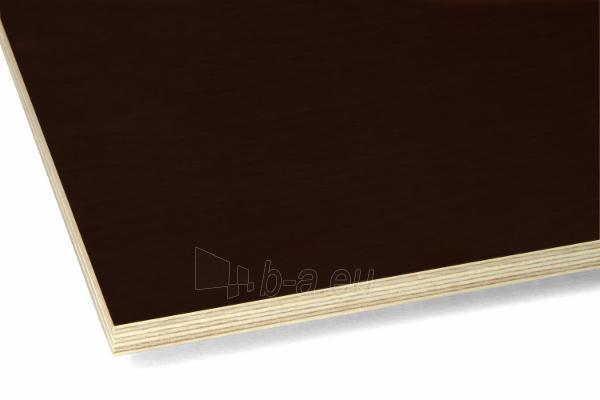 Laminated plywood1250x2500x9 L/R II atspari drėgmei (3,125 kv. m.) Paveikslėlis 1 iš 1 237330000029