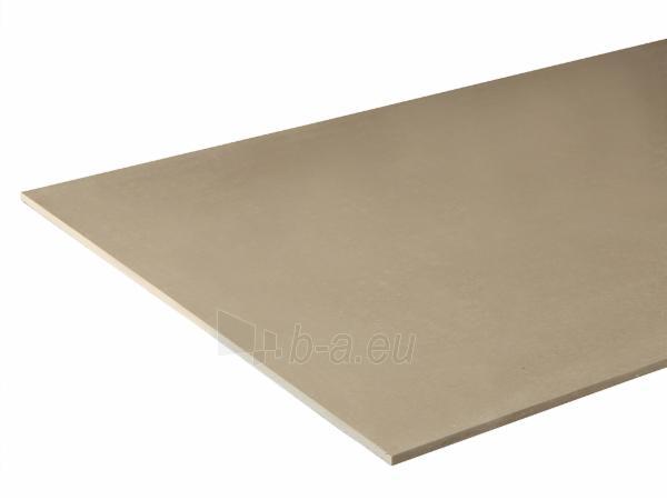 Knauf BROWN Gypsum board panel 12.5mm 900 x 2000 Paveikslėlis 1 iš 1 237350000176