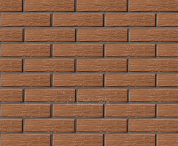 Perforated facing bricks 'Vecais Rudis' 11.212100L Paveikslėlis 1 iš 2 237610200010