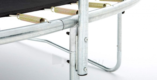 240cm Batutas su apsauginiu tinklu BERG Talent Comfort (iki 250kg) Paveikslėlis 4 iš 9 310820176334