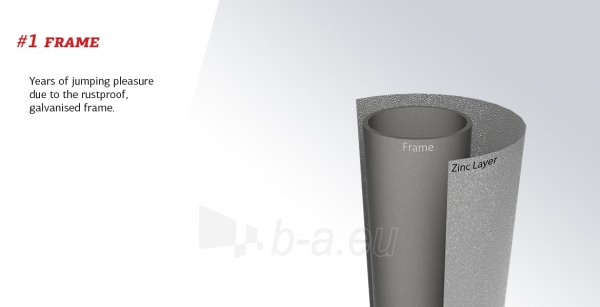 240cm Batutas su apsauginiu tinklu BERG Talent Comfort (iki 250kg) Paveikslėlis 5 iš 9 310820176334