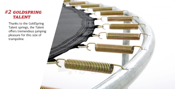 240cm Batutas su apsauginiu tinklu BERG Talent Comfort (iki 250kg) Paveikslėlis 6 iš 9 310820176334