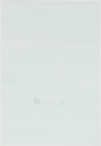 25*36 S- ARCO BLEKIT, plytelė Paveikslėlis 1 iš 1 237752004822