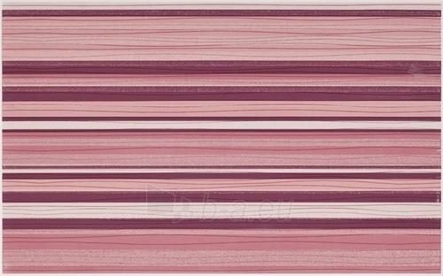25*40 ACAPULCO ROSA INS PASKI, dekoruota plytelė Paveikslėlis 1 iš 1 237751001941