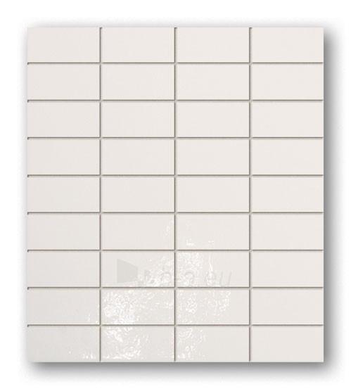 26.7*30.1 MSP- MAJOLIKA 11, mozaika Paveikslėlis 1 iš 1 237751002762