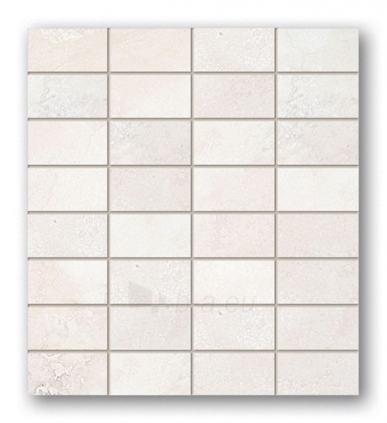 29.5*32.7 MSP-ALABASTRINO 1, mozaika Paveikslėlis 1 iš 1 237751002020