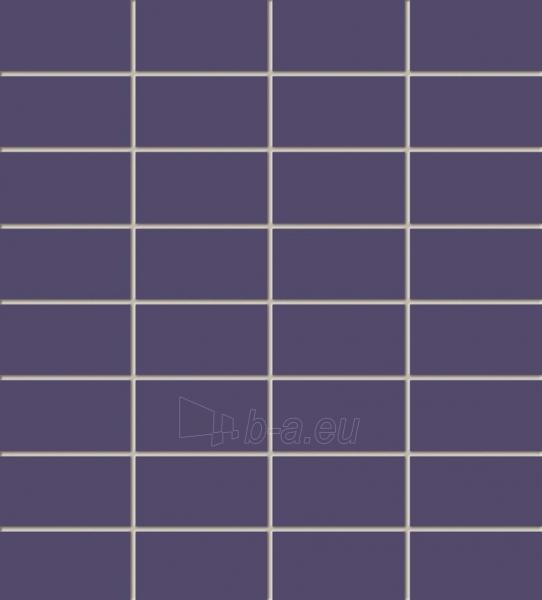 29.5*32.7 MSP-VIOLET, mozaika Paveikslėlis 1 iš 1 237751002032