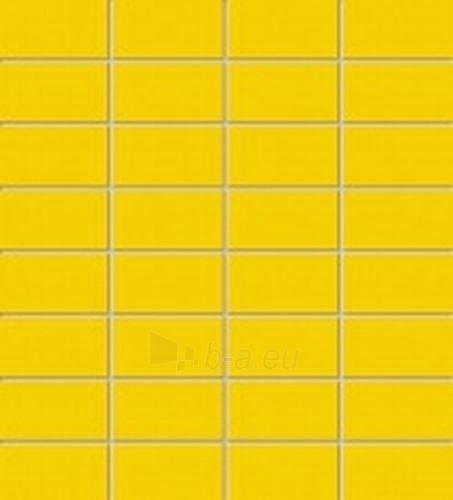 29.5*32.7 MSP-YELLOW, mozaika Paveikslėlis 1 iš 1 237751002034