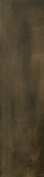 29.8*119.8 TIGUA BROWN STOP MAT, akmens masės pakopa Paveikslėlis 1 iš 1 310820024554