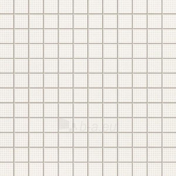 29.8*29.8 MS- VAMPA WHITE, mozaika Paveikslėlis 1 iš 1 237751002830