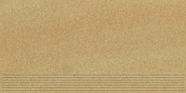 29.8*59.8 ARKESIA BROWN STOP MAT, ak. m. pakopa Paveikslėlis 1 iš 1 237751002512