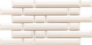 29.8*59.8 D-COLL WHITE, dekoruota plytelė Paveikslėlis 1 iš 1 237751002152