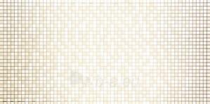 29.8*59.8 D-VAMPA PEARL, dek. plytelė Paveikslėlis 1 iš 1 237751002167