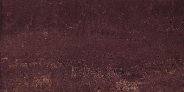 29.8*59.8 MISTRAL BROWN MAT, akmens masės plytelė Paveikslėlis 1 iš 1 237752003951