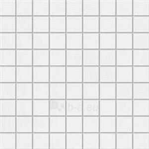 30.1*30.1 MSK-PASTEL BIALA GLOSSY, mozaika Paveikslėlis 1 iš 1 237751002322