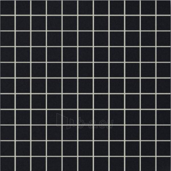 30*30 MSK-GRAY, mozaika Paveikslėlis 1 iš 1 237751002242