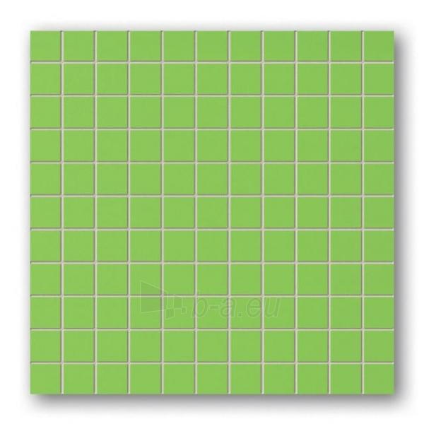 30*30 MSK-GREEN, mozaika Paveikslėlis 1 iš 1 237751002243