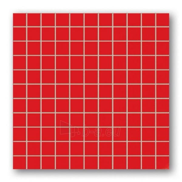 30*30 MSK-RED, mozaika Paveikslėlis 1 iš 1 237751002245