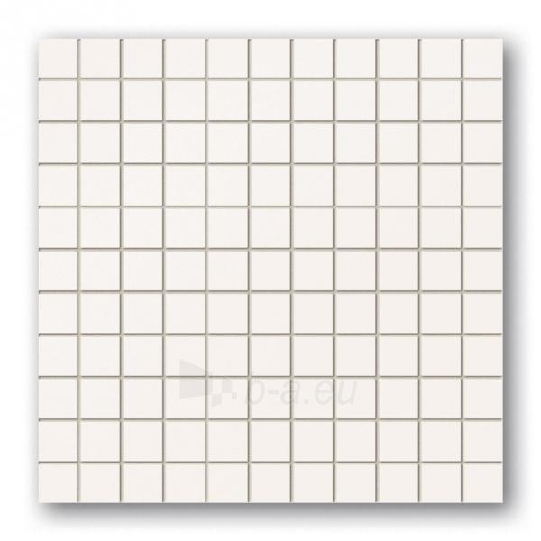 30*30 MSK-WHITE, mozaika Paveikslėlis 1 iš 1 237751002247