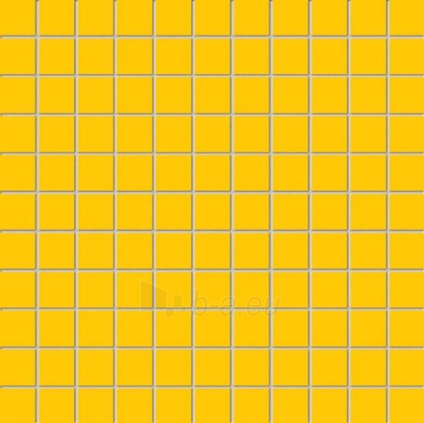 30*30 MSK-YELLOW, mozaika Paveikslėlis 1 iš 1 237751002248