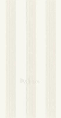 30*60 BELLICITA BIANCO INS STRIPES, dekoruota plytelė Paveikslėlis 1 iš 1 237751002261