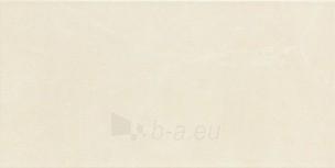 30.8*60.8 S- GOBI WHITE, plytelė Paveikslėlis 1 iš 2 237752004930