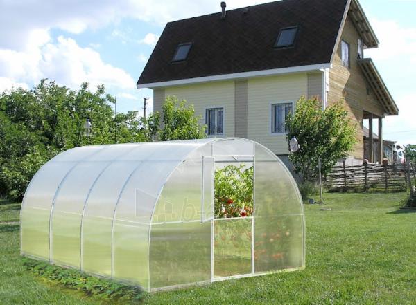 Greenhouse BETA (24 m2) 3000x8000x6 mm Paveikslėlis 2 iš 8 310820168063