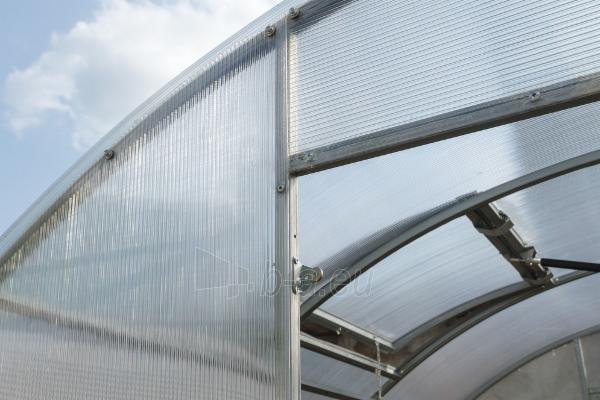 Šiltnamis ALFA (36 m2) 3000x12 000 su 6mm polikarbonato danga Paveikslėlis 8 iš 8 310820168065