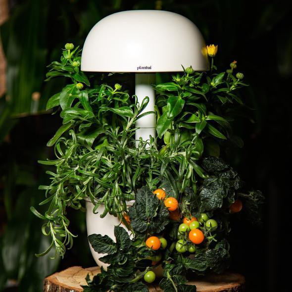 Išmanusis vazonas- daigyklė Plantui Smart Garden 3e Paveikslėlis 2 iš 8 310820193436