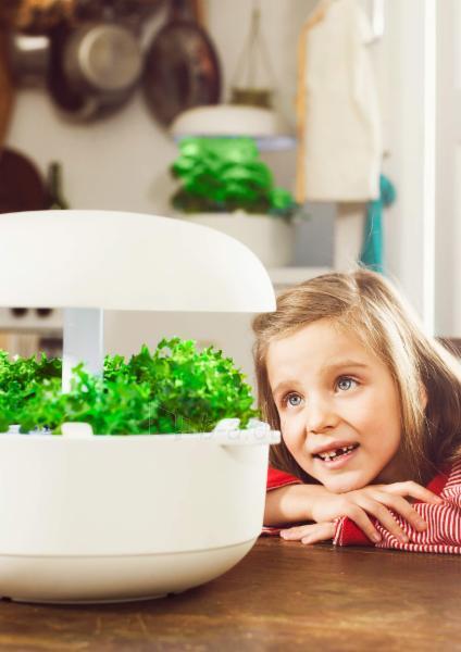 Išmanusis vazonas- daigyklė Plantui Smart Garden 6, baltas Paveikslėlis 10 iš 13 310820193437