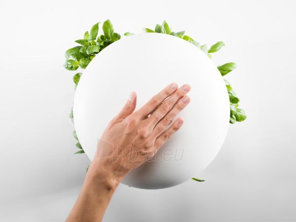 Išmanusis vazonas- daigyklė Plantui Smart Garden 6, baltas Paveikslėlis 5 iš 13 310820193437