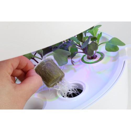 Išmanusis vazonas- daigyklė Plantui Smart Garden 6, baltas Paveikslėlis 3 iš 13 310820193437