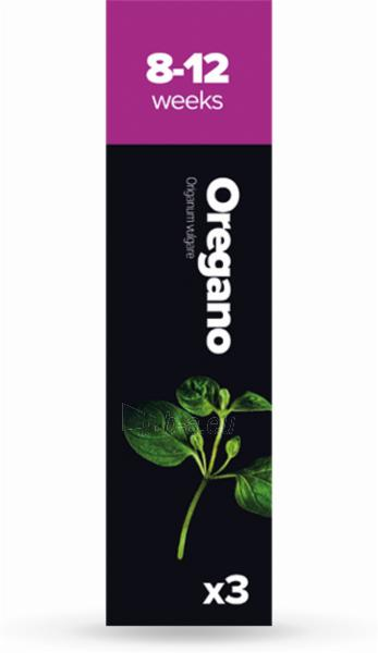 Augalų (sėklų) kapsulės Plantui, Oregano (Raudonėlis) Paveikslėlis 1 iš 7 310820193519
