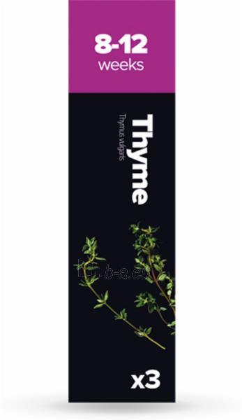 Augalų (sėklų) kapsulės Plantui, Thyme (Čiobreliai) Paveikslėlis 1 iš 7 310820193525