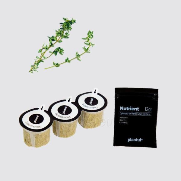 Augalų (sėklų) kapsulės Plantui, Thyme (Čiobreliai) Paveikslėlis 5 iš 7 310820193525
