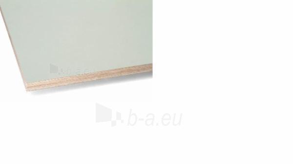 Fanera laminuota 1500x3000x15 F/F I pilka (4.5 m2)