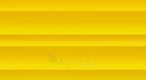 32.7*59.3 S- YELLOW R.4, tile Paveikslėlis 1 iš 2 237752004955