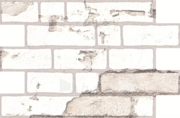 34*50 OLD CARAVISTA BLANCO, ak. m. tile Paveikslėlis 1 iš 1 237752004284