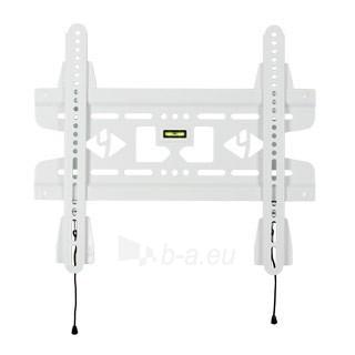 4World LCD sieninis laikiklis 15''- 37'' fiksuotas, SLIM, TV svoris iki 45kg WHT Paveikslėlis 2 iš 2 250226200268