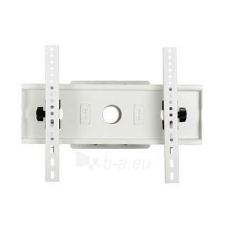 4World LCD sieninis laikiklis 25-45'' pasukimas/palenkimas TV svoris iki 60kg WH Paveikslėlis 1 iš 2 250226200280