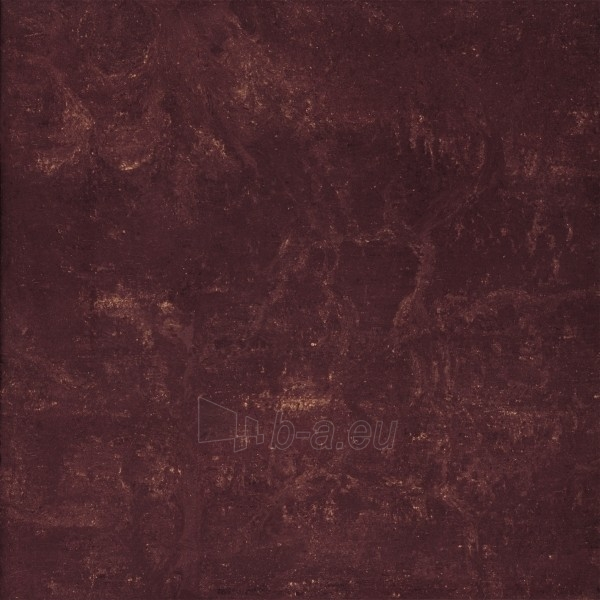 59.8*59.8 MISTRAL BROWN MAT, ak. m. tile Paveikslėlis 1 iš 1 237752004601