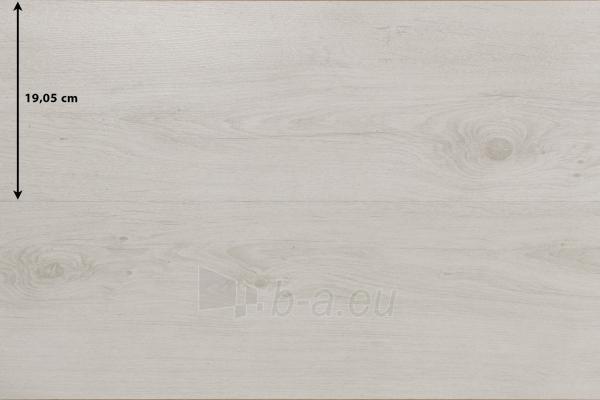 619 VITALITY DIPLOMAT, 1261x190.5x8, 32kl., baltai alyvuoto ąžuolo laminuota gr.danga Paveikslėlis 1 iš 1 310820018867