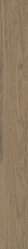 7*60 AMICHE BROWN, dekoruota strip Paveikslėlis 1 iš 1 310820068469