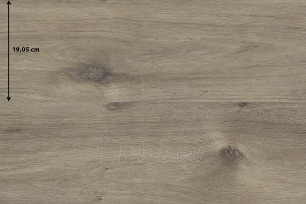 Laminuota grindų danga 969 XPERTPRO STANDARD 8, 1257x190.5x8, 33kl., Cabin Oak Paveikslėlis 1 iš 1 310820018870