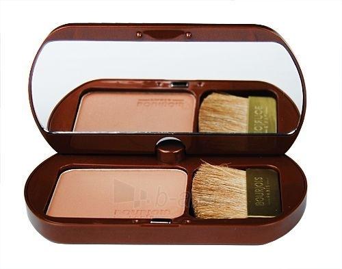 BOURJOIS Paris Delice De Soleil Bronzing Powder 14 Cosmetic 8g Paveikslėlis 1 iš 1 250873300019