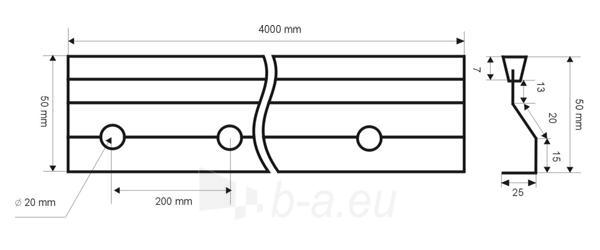 Betonavimo profilis BFP 50 Paveikslėlis 1 iš 1 236250100009